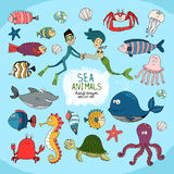 Set of hand-drawn cartoon sea life. With a diver  mermaid  assorted tropical fish  shark  whale  octopus  jellyfish  crab  turtle  lobster  starfish and shells Stock Photo