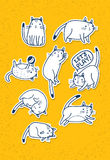 Set of Hand Drawn Cats. Funny Vector Pet Sketch Concept Stock Photo