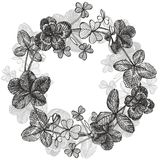 Set of hand drawn clover illustrations isolated on white background. Vector Floral wreath. Graphic round border. Set of hand drawn clover illustrations isolated Stock Image
