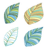 Set of hand drawn colorful leafs,  on white. Stock Photos