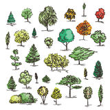 Set of hand drawn colorful trees. Ink style. Royalty Free Stock Images