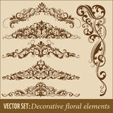 Set of hand drawn decorative vector floral elements for design. Page decoration element Stock Image