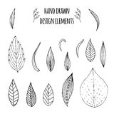 Set of hand drawn design elements. Vector. Illustration for your design Royalty Free Stock Images