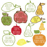 Set of hand drawn eco frendly labels. illustration Stock Photos