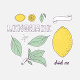 Set of hand drawn elements for lemonade or soda drink package design. Doodle lemon, leaves, icons, logo template and handlettering Royalty Free Stock Photography
