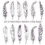 Set of hand drawn feathers for American Indian Dreamcatcher masc Stock Photos