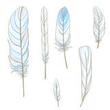 Set with hand drawn feathers Stock Photos