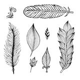 Set of hand drawn feathers. Vector illustration. Stock Images