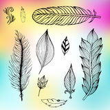 Set of hand drawn feathers. Vector illustration. Royalty Free Stock Photos