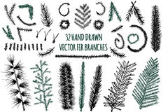 Set of 32 Hand Drawn Fir Branches. Christmas Tree, Vector elements isolated on white background Royalty Free Stock Image
