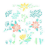 Set of hand drawn floral compositions and elements Royalty Free Stock Photos