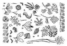 Set of Hand Drawn Floral Design Elements Isolated on White. Set of Fantastic Hand Drawn Floral Design Elements Isolated on White Background. Vector Illustration stock illustration
