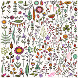Set of hand-drawn floral elements. More than 100 creative color floral elements. Really big hand-drawn set of different flowers, leafs, berries, and other nature Stock Images