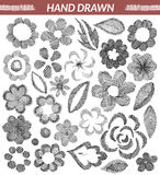 Set of hand drawn floral elements Royalty Free Stock Image