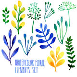 Set of hand drawn floral watercolor  elements Royalty Free Stock Image