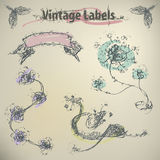 Set of hand-drawn flowers end ribbon. Vintage Labels Stock Image