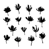 Set of hand drawn flowers. Grunge style ink paint elements for design. Black isolated vector on white background.  vector illustration