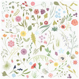 A set of hand drawn flowers Stock Photography