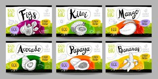 Set of hand drawn food labels, spices labels, fruit labels, vege. Set colorful food labels, sketch style, food fruits cardboard texture. Figs, kiwi, mango Stock Photo