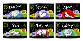 Set of hand drawn food labels, spices labels, fruit labels, vege Royalty Free Stock Photos