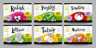 Set of hand drawn food labels, spices labels, fruit labels, vege Stock Images