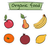 Set of hand drawn fruit icons. Vector illustration. Set of hand drawn color fruit icons. Healthy organic diet. Vector illustration Royalty Free Stock Photos