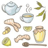 Set of hand drawn ginger tea elements. Green tea, cup, honey, teapot, lemon and ginger. Vector illustration Stock Photo