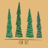 Set of hand drawn green firs. four isolated object. Long and sharp stylised trees