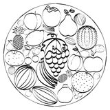 A set of hand-drawn icons fruits inscribed in a circle. Black and white concept. Stock Images