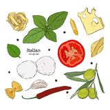 Set with hand drawn illustrations of food. Italian cuisine. Ingregient of italian cuisine, cheese, pasta olive, basil, pepper, garlic, chili. vector vector illustration