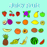 Set of hand drawn juicy fruits and berries. Blue background vector illustration