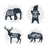 Set of hand drawn labels with animals vector illustrations and l Royalty Free Stock Images