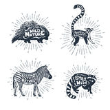 Set of hand drawn labels with animals vector illustrations Royalty Free Stock Photo