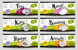 Set of hand drawn labels food, spices. Set of colorful stickers in sketch style, food, spices, white, horizontal. Figs, kiwi, mango avocado papaya bananas Royalty Free Stock Photos