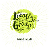 Set of hand drawn labels food, spices. Locally grow logo, farm fresh, lettering design, green, calligraphy logotype, leaf. Hand drawn vector illustration Royalty Free Stock Image