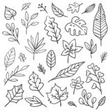 Set of leaves doodle royalty free illustration