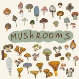 Set of hand-drawn mushrooms Royalty Free Stock Photo