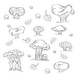 Set of Hand Drawn Mushrooms Isolated on White. Autumn Falling Leaves. Stock Photo
