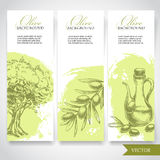 Set of hand drawn olive banners. Olives, olive tree and olive branch. On watercolor splash background. Organic food illustration stock illustration