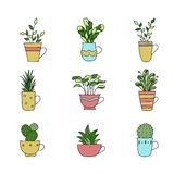 Set of hand drawn plants in cup. Cartoon hand drawning plants. V vector illustration