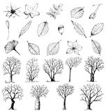 Set of hand drawn plants and trees Stock Image