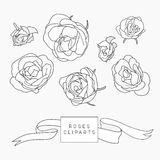 Set of hand drawn rose cliparts Royalty Free Stock Photo