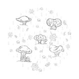 Set of Hand Drawn Sketch autumn  leaves, mushrooms and drops arranged in a shape of a circle. Different  Fall Symbols Stock Photography