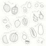 Set of hand drawn sketch tropical fruits part 2. Set of hand drawn tropical fruits part2 stock illustration