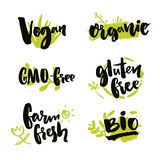 Set of hand drawn stickers for natural products and food package. Vector brush lettering on green spots. Vegan badge. GMO free, farm fresh label. Gluten free royalty free illustration