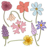 Set of hand-drawn summer flowers Stock Image
