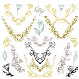 Set of hand drawn symmetrical floral graphic design elements in retro style. Illustration . Hand drawn floral set. Pastel ba Royalty Free Stock Photography