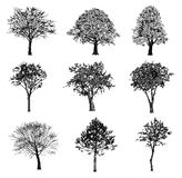 Set of hand drawn trees. Stock Photos