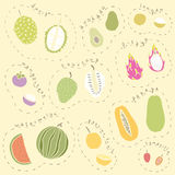 Set of hand drawn tropical fruits part 2 Stock Images