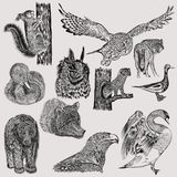 Set of hand drawn vector animals Royalty Free Stock Images